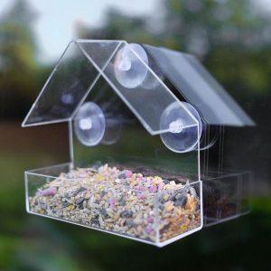 Little House Clear Bird Feeder