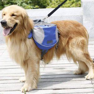 Britedoggie Outdoor Dog Backpack